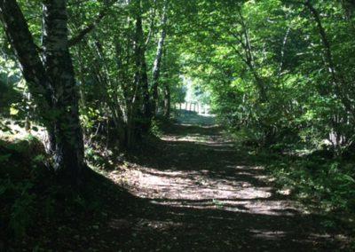 Chemin 22